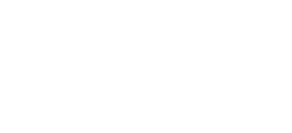 Total Mountain Logo